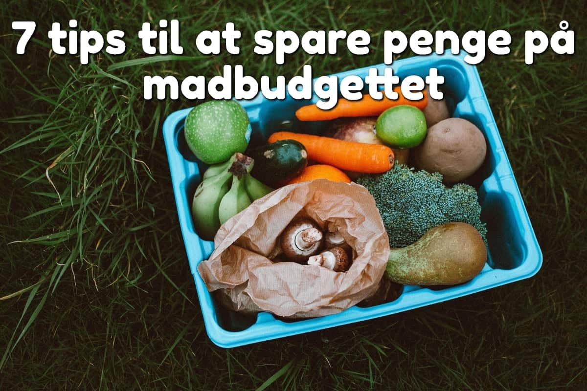 7 tips til at spare penge på madbudgettet